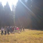 Ranger Walk Yosemite