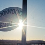 Brookwood Farm Sign