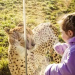 Lily and the Leopard