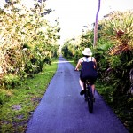 Bike Path Sanibel Island