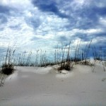 Dreamscape Gulf Shores National Seashore