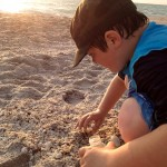 Searching for Shark Teeth at Blind Pass Beach