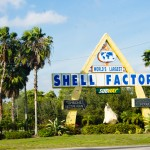 The Worlds Largest Tourist Trap the Shell Factory