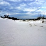 White Sands Gulf Shores National Seashore