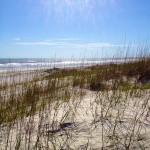 Beach Anastasia State Park Florida