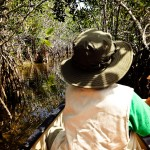 Canoing Nine Mile Pond Everglades NP
