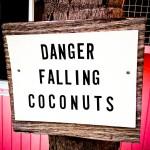 Danger Falling Coconuts FL Keys