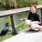 Thing Two Tries to Pet Bird Everglades
