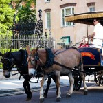 Carriage Charleston SC