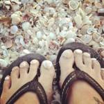 Seashell Toes FL