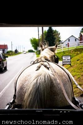 Amish Horse Buggy PA