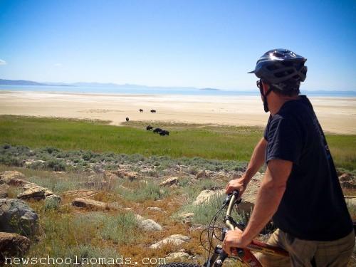 Brent Biking Bison Antelope Island UT