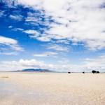 Antelope Island State Park Utah UT