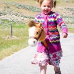 Stick Horse Antelope Island UT