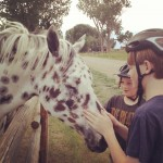 Petting Horses IG