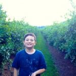 Berry Picking North Cascades NP WA