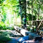 Bridge North Cascades NP WA