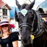 Horse and Driver Leavenworth WA