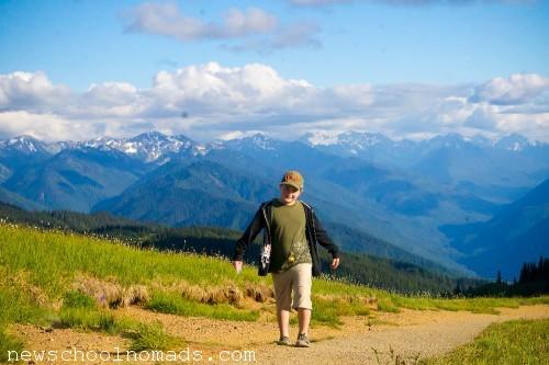 Hiking Olympic National Park WA 1