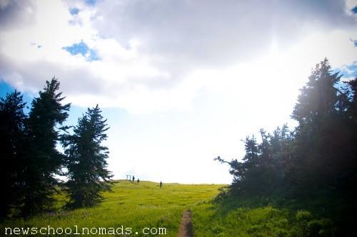 Visiting Olympic National Park WA 1