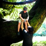 Tree climbing  Olympic Peninsula WA