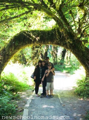 family hoh rainforest wa