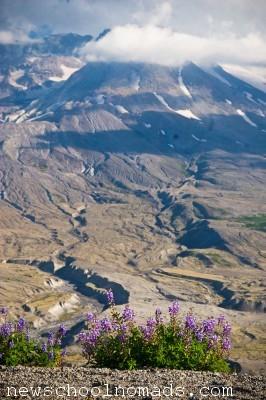 Mt St Helens WA