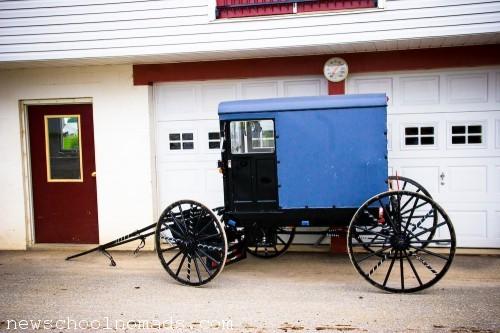 Amish Buggy PA