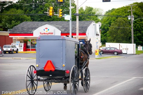 Amish Buggy on Road PA