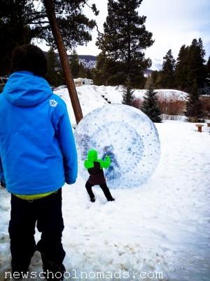 Hamster Snow Ball