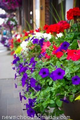 Flowers Leavenworth WA