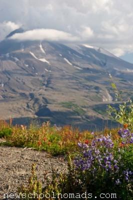 Visiting Mt St Helens WA