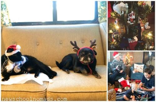 PicMonkey Collage Pets Christmas CA 2014